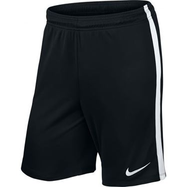 Picture of Nike League Knit Shorts