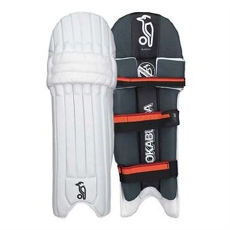 Picture for category Blaze Batting pads