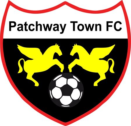 Picture for category Patchway Town FC