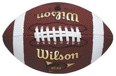 Picture of Wilson NFL Micro American Football