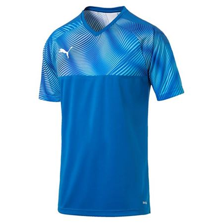 Picture for category Puma Shirts