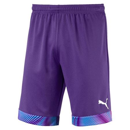 Picture for category Puma Shorts