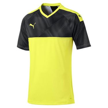 Picture of Puma Cup Jersey