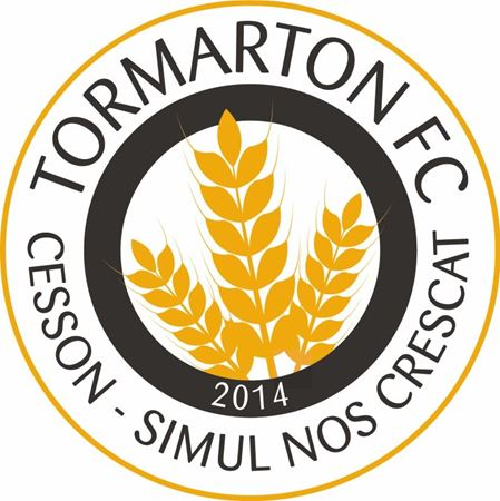 Picture for category Tormarton FC