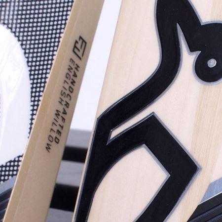 Picture for category Concept 20 Cricket Bats