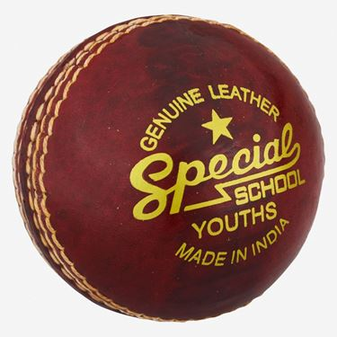 Picture of Readers Special School Cricket Ball