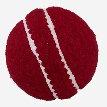 Picture of Readers Allplay Red Training Youths Cricket Ball