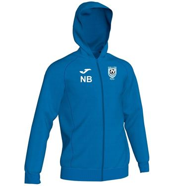 Picture of Hallen AFC Hooded Top
