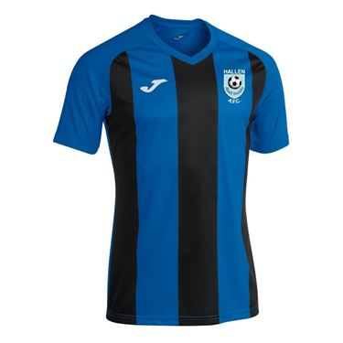 Picture of Hallen AFC Home Shirt